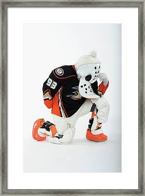 2012 Nhl All-star Game - Mascot Framed Print