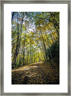 Framed Print featuring the photograph Scenic Views Along Virginia Creeper Trail by Alex Grichenko