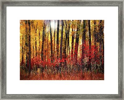 Autumn Light Framed Print by Leland D Howard