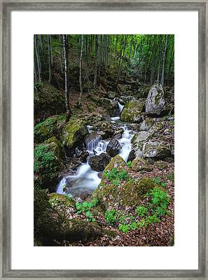 Bela River, Balkan Mountain Framed Print