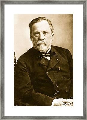 Louis Pasteur Framed Print by Paul Nadar