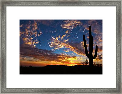 A Blanket Of Many Colors Framed Print