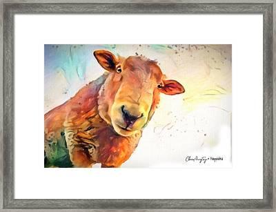 A Curious Sheep Called Shawn Framed Print