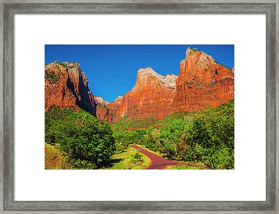 A Fork In The Road Framed Print by Fernando Margolles