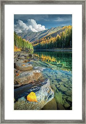 Framed Print featuring the photograph A Golden Reflection / Flathead River, Glacier National Park  by Nicholas Parker