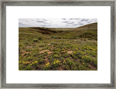 Framed Print featuring the photograph A Moment Of Color by Scott Bean