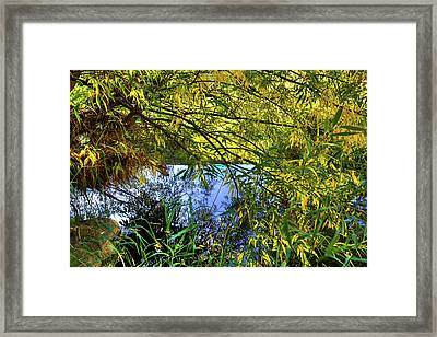 Framed Print featuring the photograph A Peek At The River by David Patterson