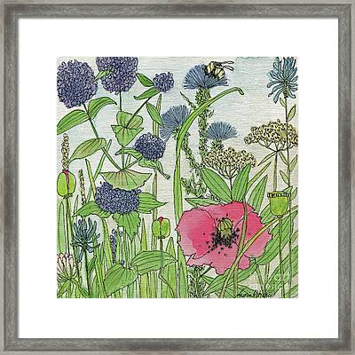 A Single Poppy Wildflowers Garden Flowers Framed Print