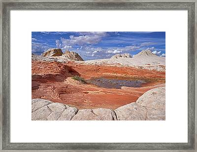 Framed Print featuring the photograph A Strange World by Theo O'Connor