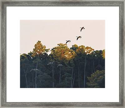 Framed Print featuring the painting A Touch Of Gold by Peter Mathios
