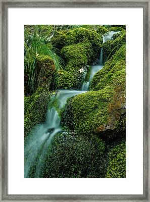 A View From The Side Of The Bow Valley Parkway, Banff National P Framed Print