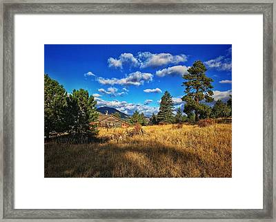 Framed Print featuring the photograph Abandoned Cabin by Dan Miller