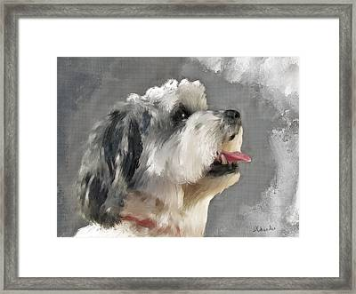 Abby 2 Framed Print