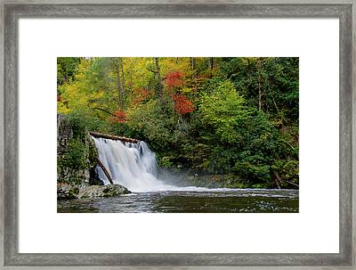Abrams Falls Framed Print