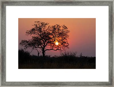 Framed Print featuring the photograph Africa Sunset by John Rodrigues