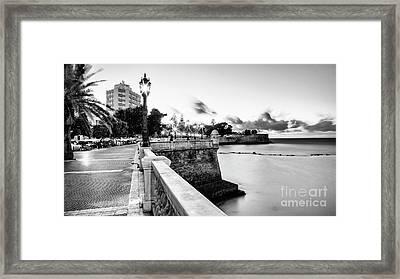 Framed Print featuring the photograph Alameda Apodaca Promenade Cadiz Spain Black And White by Pablo Avanzini