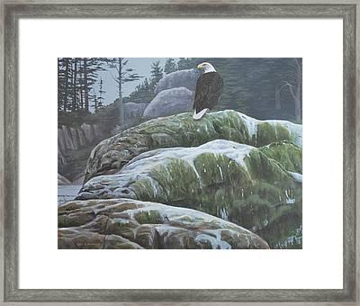 Alaskan Sentinel Framed Print