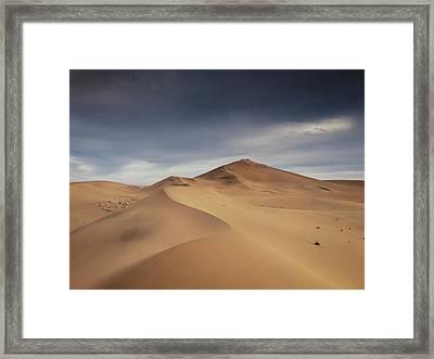 Algouz Framed Print