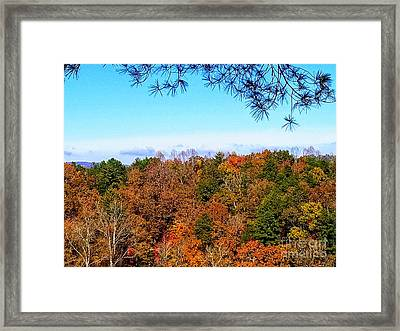 Framed Print featuring the photograph All The Colors Of Fall by Rachel Hannah