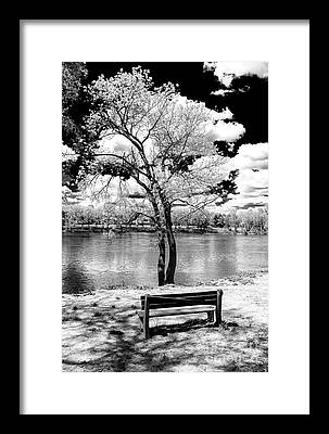Delaware State Park Framed Prints