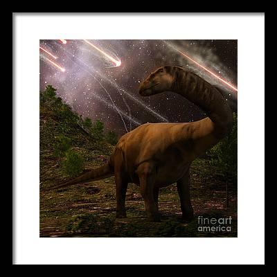 Fossil Framed Prints