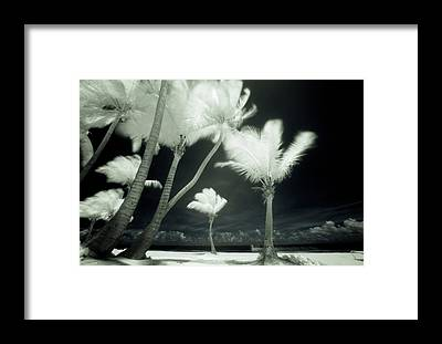 Physical Features Framed Prints