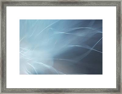 Framed Print featuring the photograph Angels Wing by Michelle Wermuth