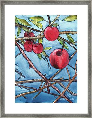Apple Harvest Framed Print