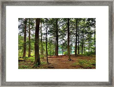 Framed Print featuring the photograph Approaching Sis Lake by David Patterson