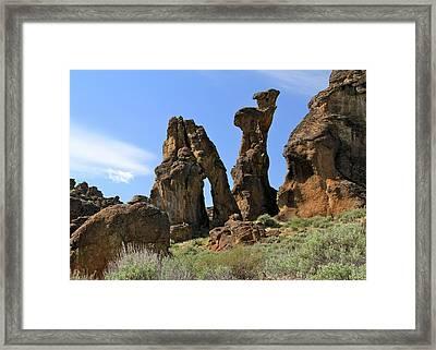 Arches Hoodoos Castles Framed Print