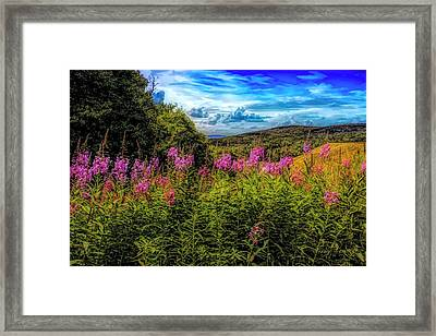Art Photo Of Vermont Rolling Hills With Pink Flowers In The Fore Framed Print