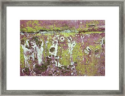 Framed Print featuring the photograph Art Print Patina 51 by Harry Gruenert