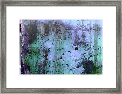 Framed Print featuring the photograph Art Print Variant 10c by Harry Gruenert