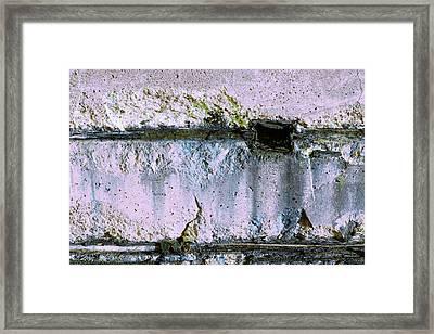 Framed Print featuring the photograph Art Print Whites 30 by Harry Gruenert