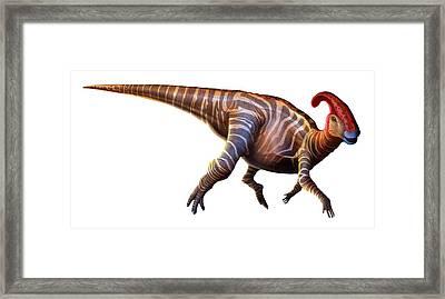 Artwork Of A Parasaurolophus Dinosaur Framed Print by Mark Garlick