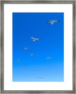 Ascending To Heaven Framed Print