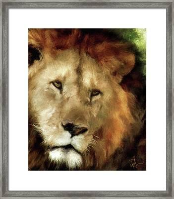 Aslan Framed Print