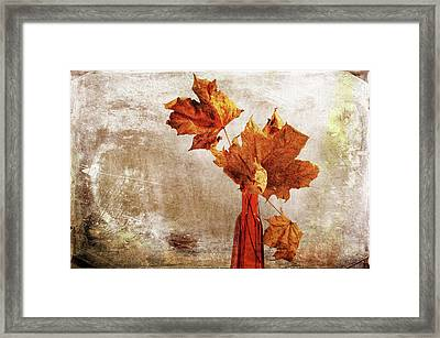 Framed Print featuring the photograph Atumn In A Vase by Randi Grace Nilsberg