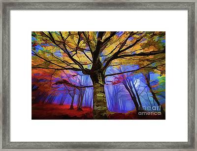 Autumn A18-120 Framed Print