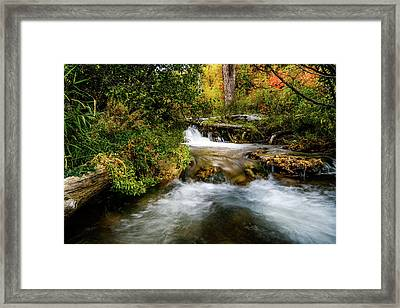 Framed Print featuring the photograph Autumn Along The Provo Deer Creek by TL Mair