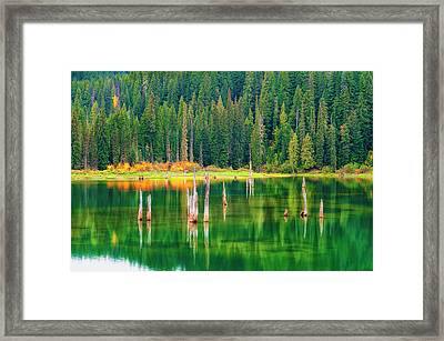 Autumn At Goose Lake Gifford Pinchot National Forest Framed Print