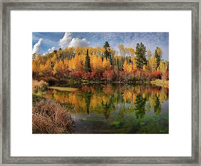 Autumn At Its Best Framed Print by Leland D Howard