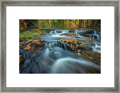 Framed Print featuring the photograph Autumn Cascade In Vaughan Woods by Rick Berk