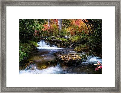 Framed Print featuring the photograph Autumn Cascades by TL Mair