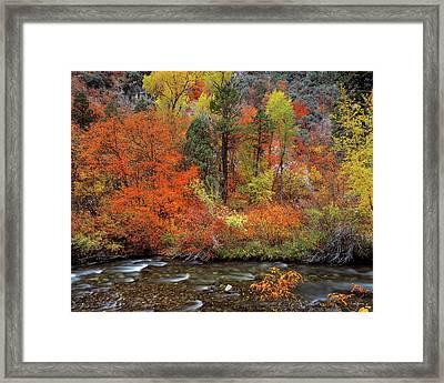Autumn Creek Framed Print by Leland D Howard