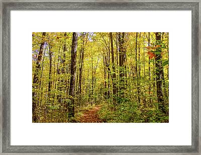 Autumn Hike Framed Print