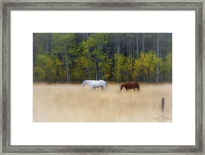 Autumn Horse Meadow Framed Print