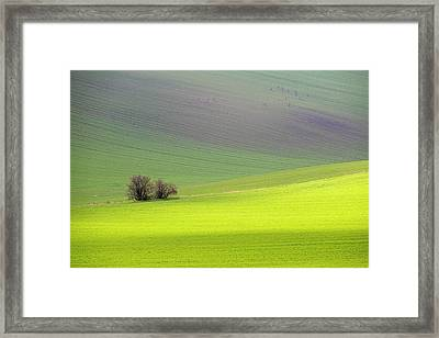 Autumn In South Moravia 13 Framed Print
