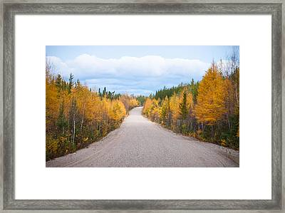 Autumn In Ontario Framed Print