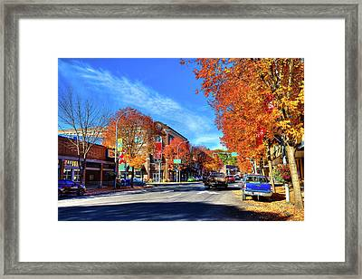 Framed Print featuring the photograph Autumn In Pullman by David Patterson